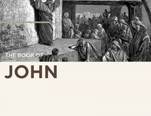 John 30 Day Reading Guide