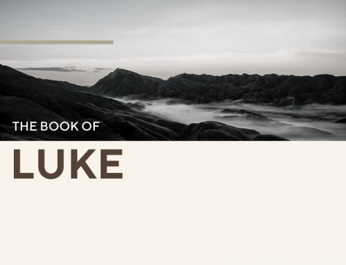 Luke 30 Day Reading Plan