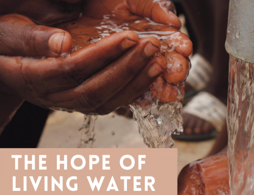 The Hope of Living Water – 2020 Christmas Offering